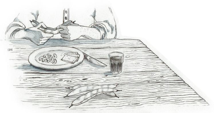 Sotto-la-gonna-Illustrazioni-Chiara-Mulas-Chimù-Racconto-Matteo-Gallo-9.jpg