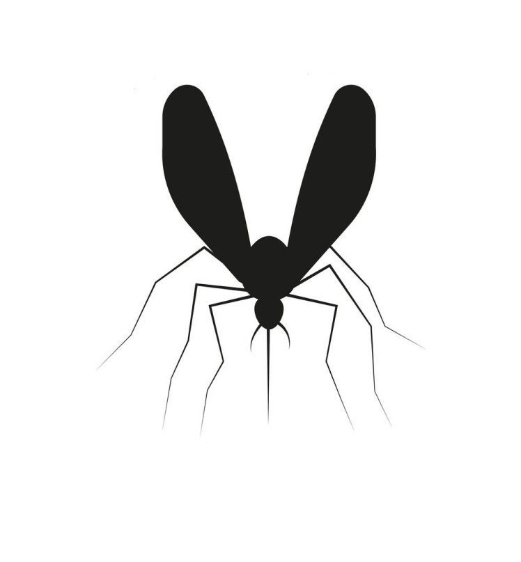 set-mosquito-silhouette-vector-17808244 2